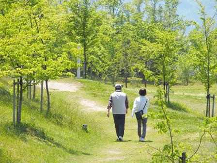 senior-walking.png