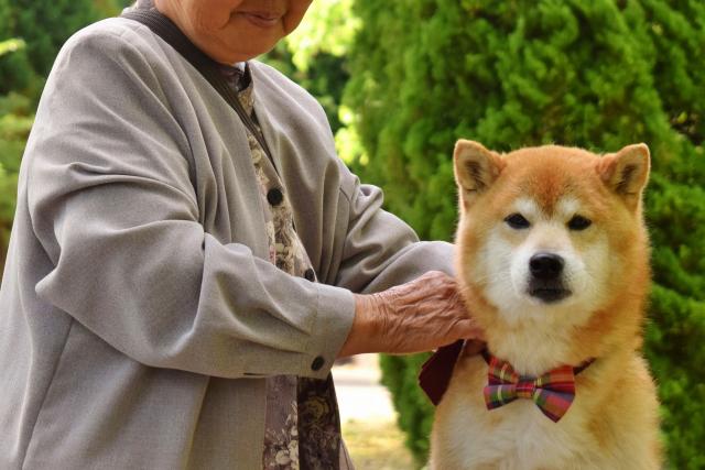 senior-woman-dog.png